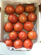高糖度トマト(販売終了)